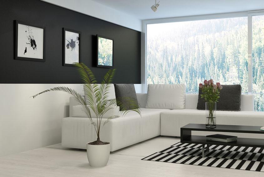 soggiorno bianco e nero
