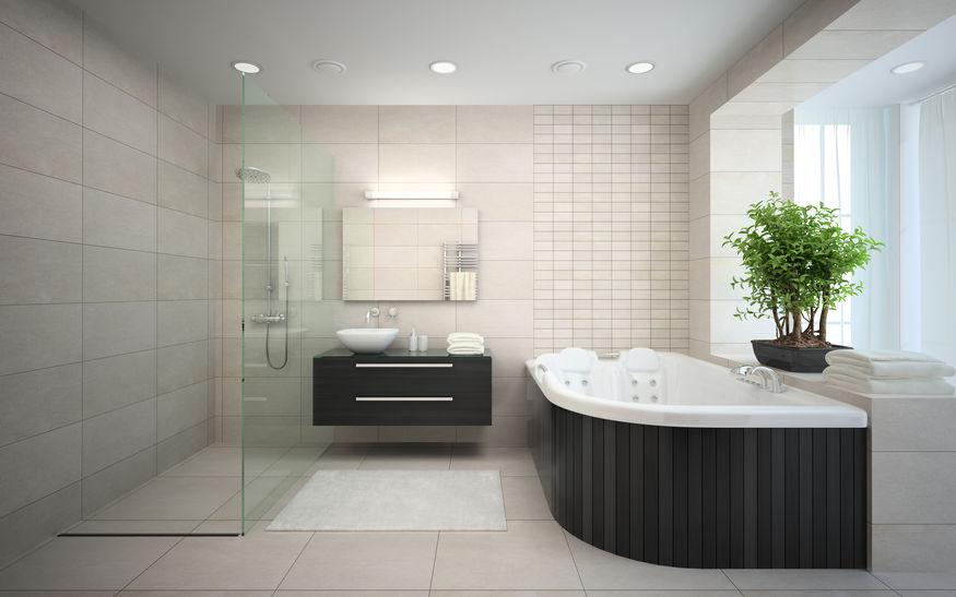 bagno di lusso con vasca e doccia