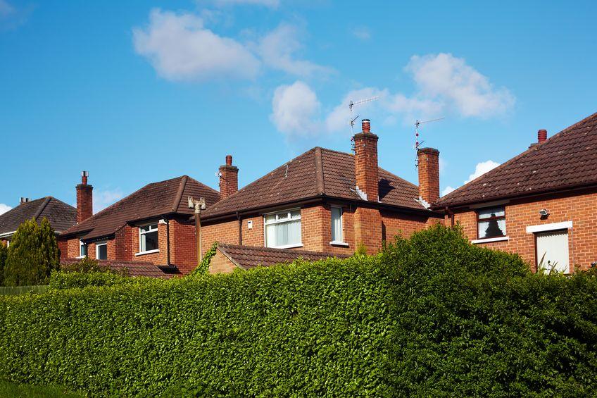 Siepe: recinzione naturale per la casa