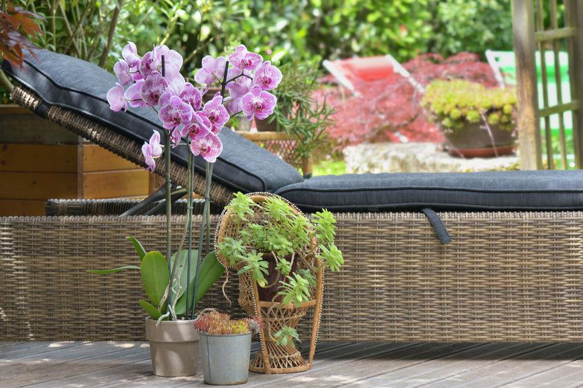 lettino da giardino in vimini