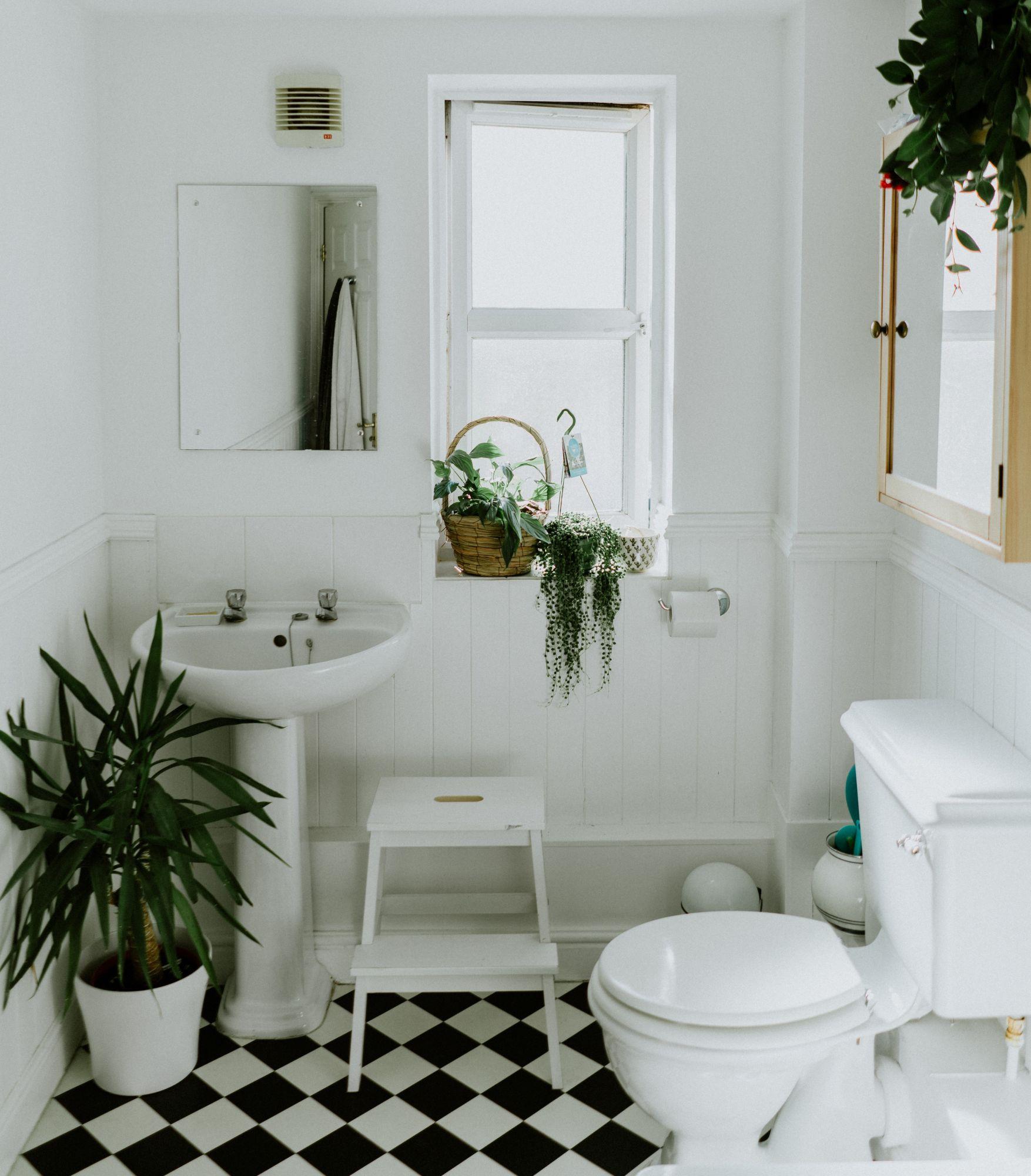 Rivestimento per il bagno: piastrelle a metà parete