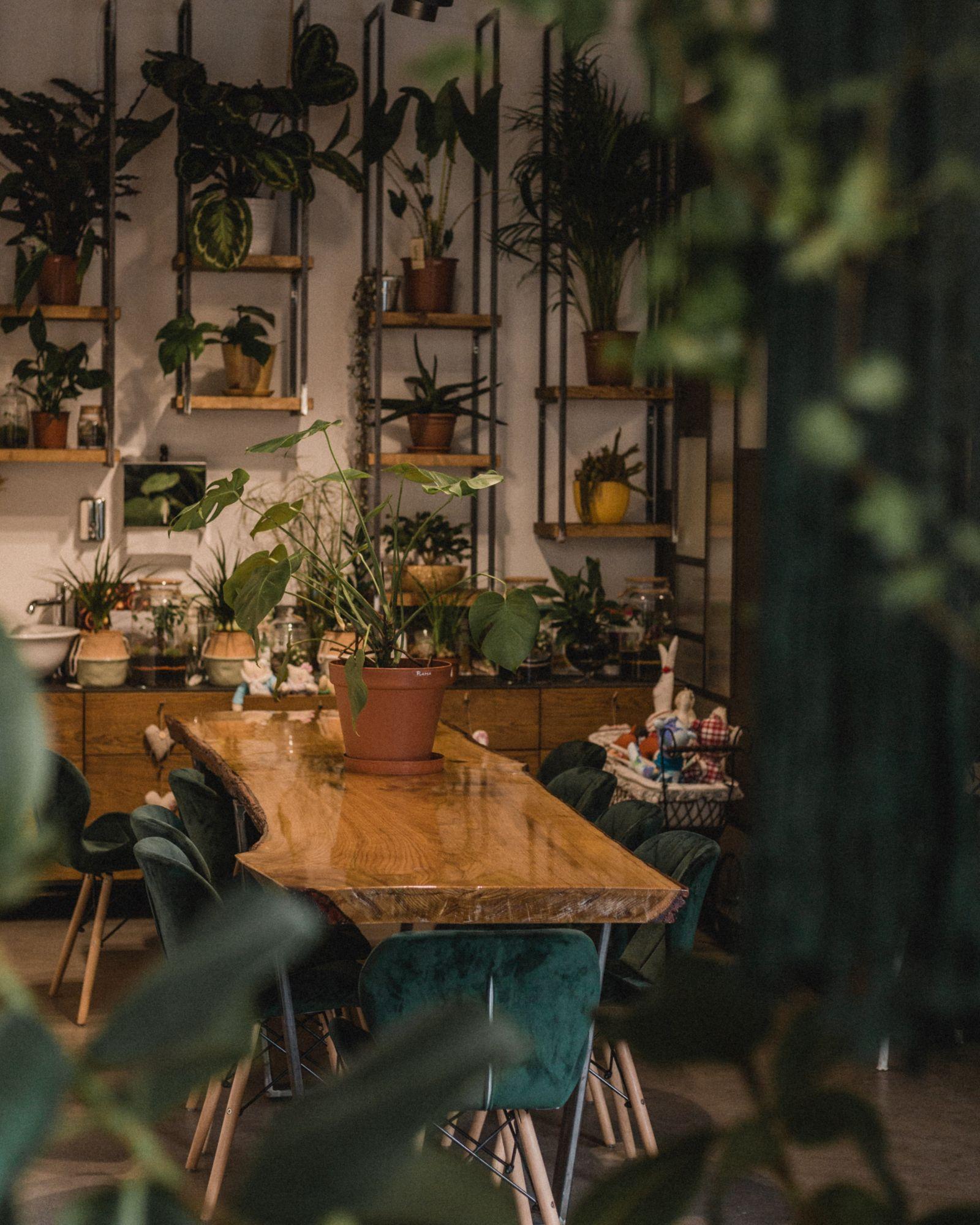sala da pranzo con piante