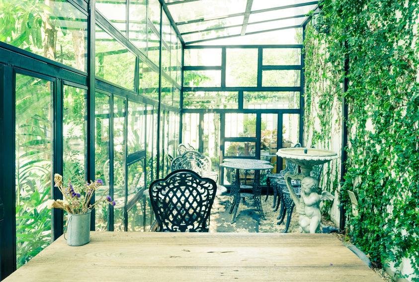 Serra botanica per la casa: piante rampicanti e arredi giardino