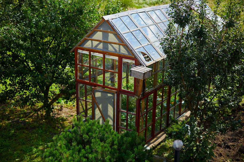 serra per giardino