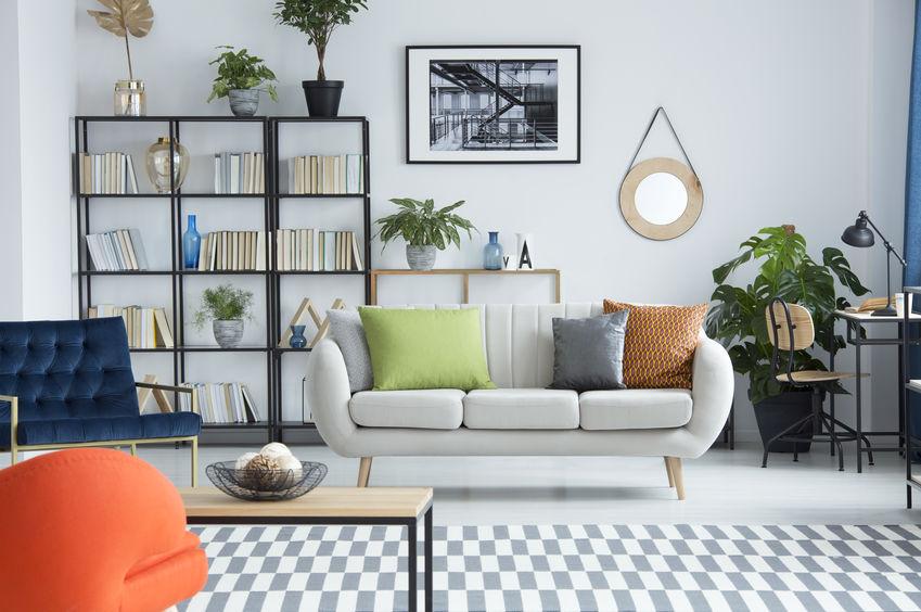 Specchio tondo: con cornice in un soggiorno trendy