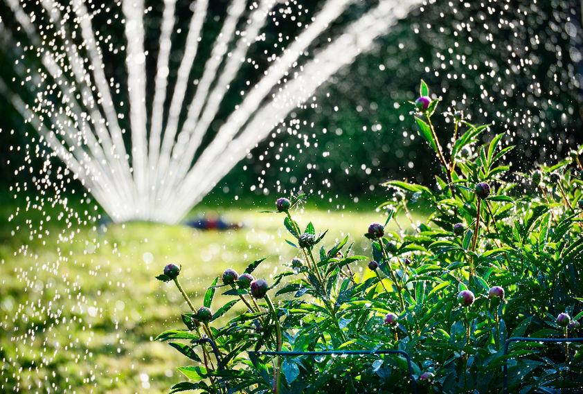 installazione impianti irrigazione domestici