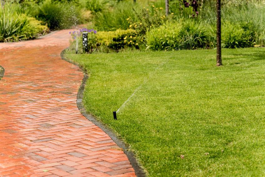 irrigazione del prato in giardino
