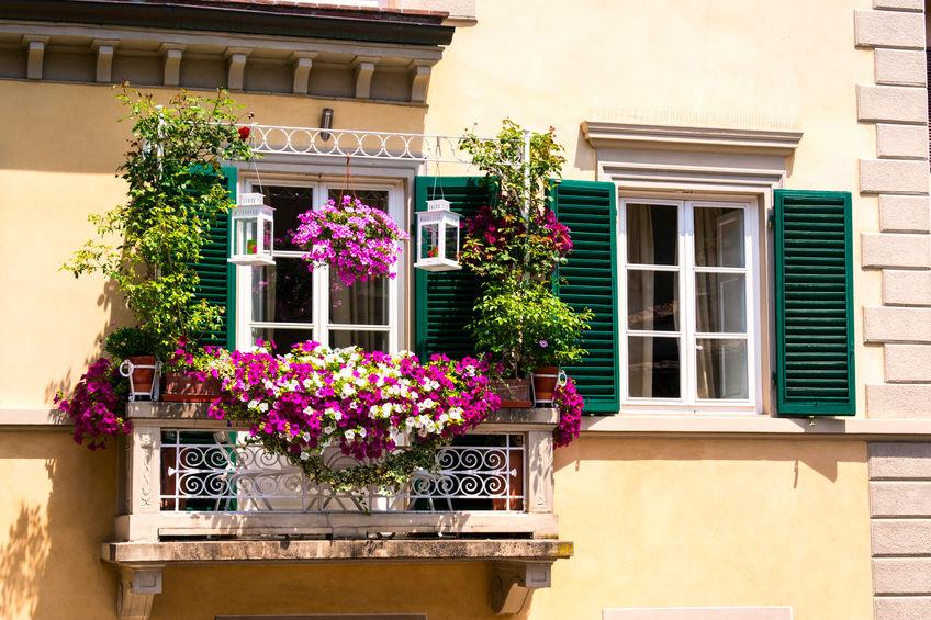 Fiori stagionali per balcone fiorito