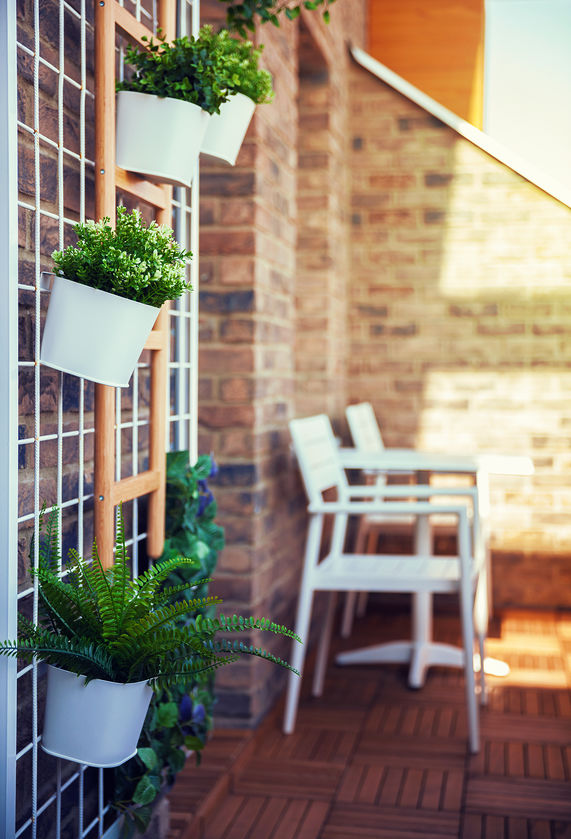 supporti per piante da esterni