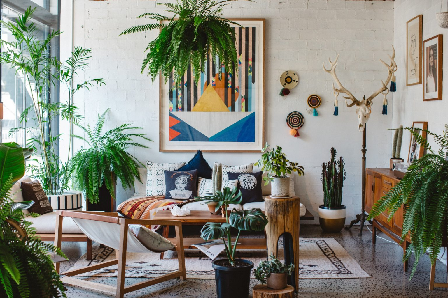 Stile bohoemian jungle: 5 elementi fondamentali per ricrearlo in casa