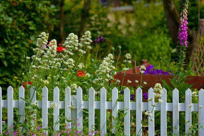 Cottagecore style: arredare casa con fiori profumati